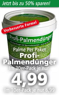 Profi-Palmendünger
